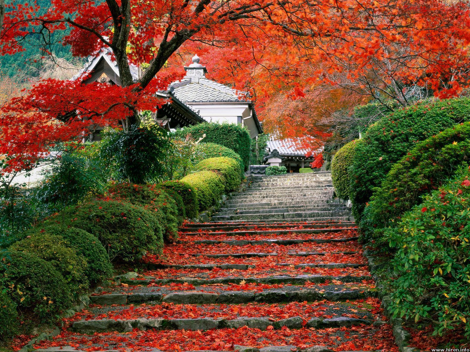 beautiful-Japan-beautiful-places-20150791-1600-1200